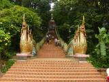 Doi Suthep Temple Tour in Thailand