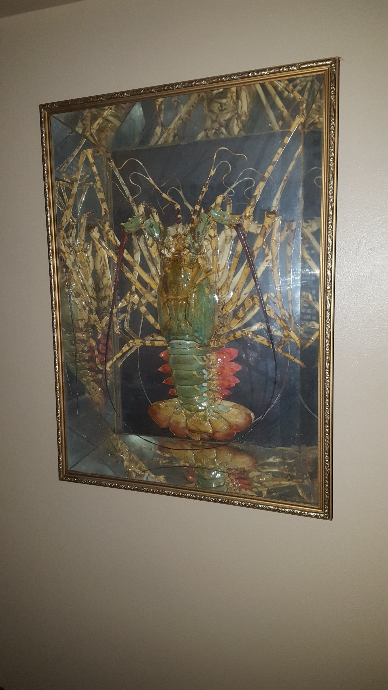 Giant lobster trophy