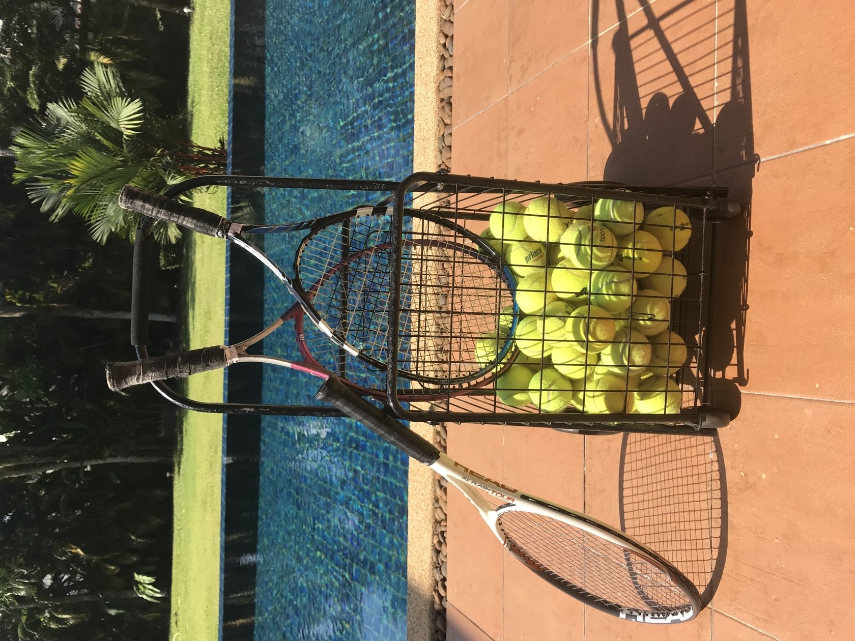 Basket of tennis balls  with wheels