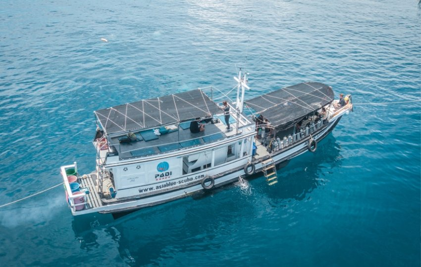 Scuba Diving And Tour Boat For Sale