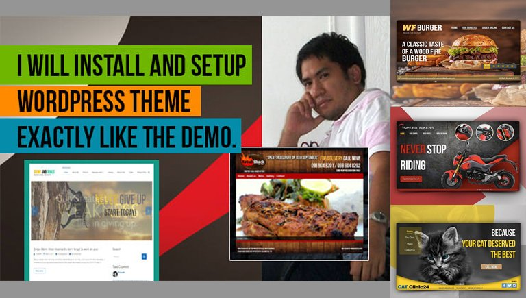 I Will Install Fix WordPress Theme And Set Up Like The Demo Site