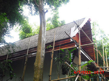 Wood Work and Property Renovate