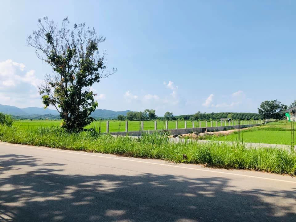 Land on main road for sale Chiang Rai Thailand