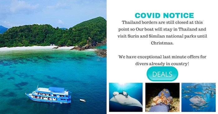 Best of Thailand Dive Cruise 4 days: a long week end diving! 20% off!