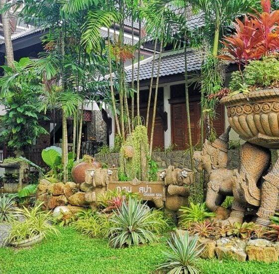 The art of Thai massage – Chann Wellness Spa, Kamala | The Thaiger