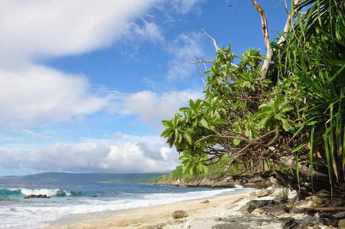 No island is immune | Thaiger