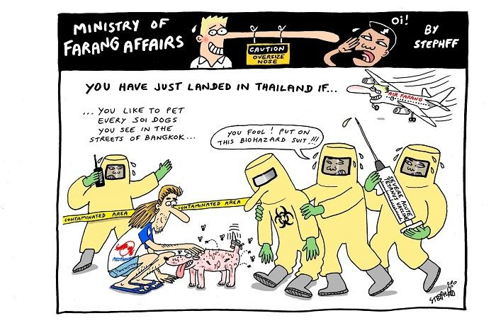 Ministry of Farang Affairs: Petting every dog you see | The Thaiger