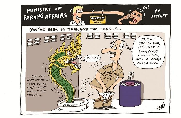 Ministry of Farang Affairs: Careful in the crapper | The Thaiger