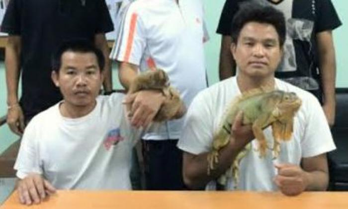 Exercising off-duty cop nabs two animal touts in Phuket | Thaiger