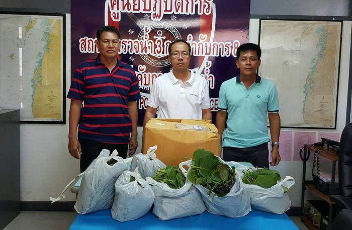 Kratom package seized at Phuket Town Post Office | The Thaiger