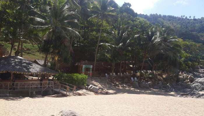 Guns seized, staff test positive for drugs in Phuket beach mafia thug raid   The Thaiger
