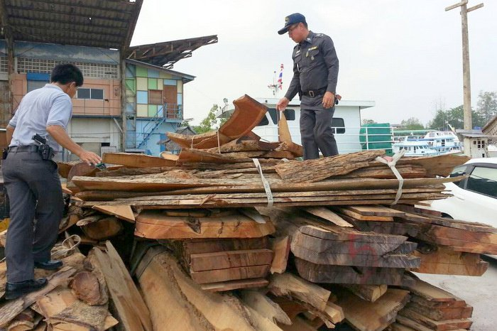 Police seize bumper haul of illegal lumber | The Thaiger