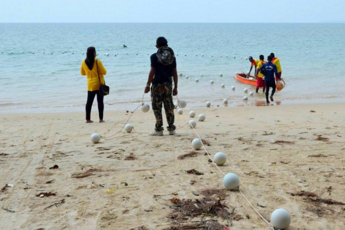 "Phuket park officials set ""no go' zone to protect new reef 