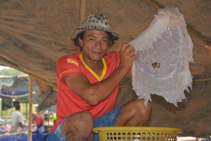 Edible jellyfish help Krabi fishermen earn extra cash | The Thaiger