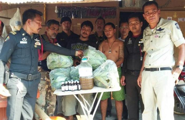 Kratom dealers busted in Krabi raid   The Thaiger
