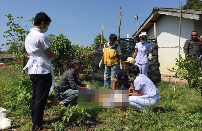 Krabi kratom thief found dead near tree   The Thaiger
