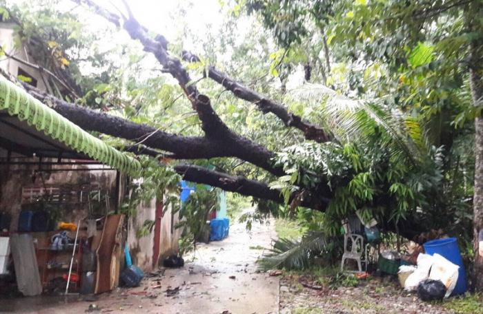 Fierce storms cause more than B300,000 worth of damage | The Thaiger