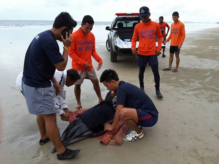 Rescue operation underway to save injured dolphin   The Thaiger