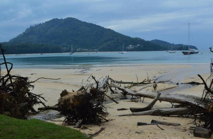 Marine experts: action needed to counter Phuket beach erosion | The Thaiger