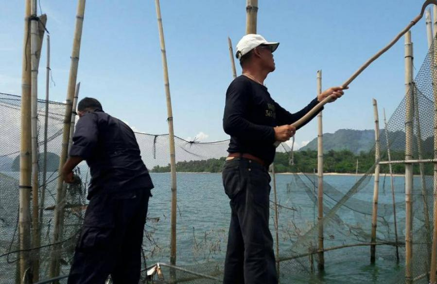 Krabi officials remove dozens of illegal fishing nets | The Thaiger