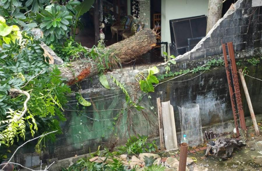 Heavy downpours damage property in Phuket | The Thaiger