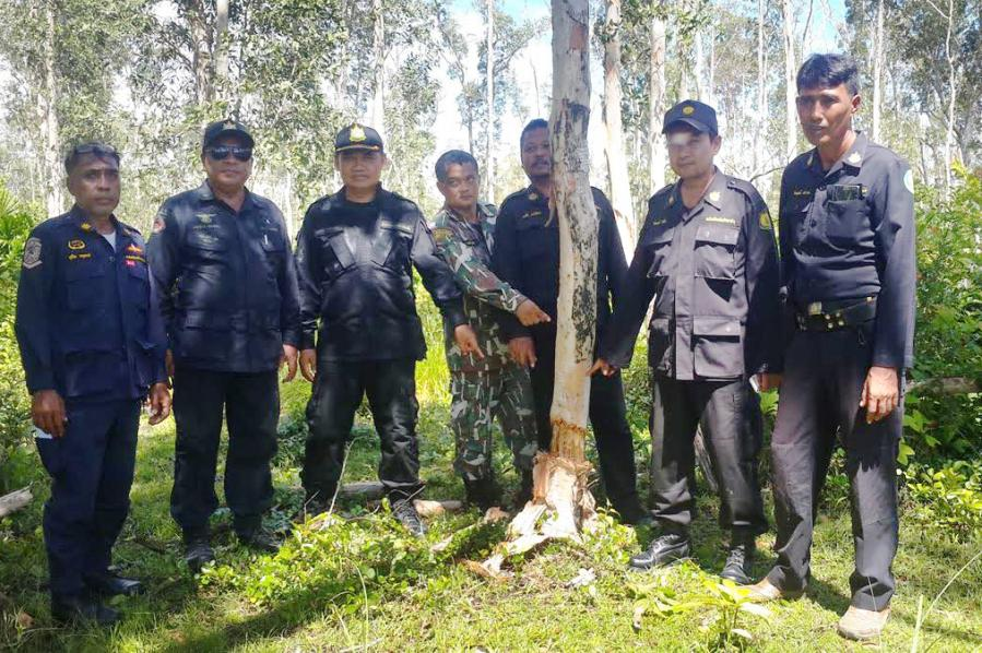 Forestry and Wildlife officers on Koh Lanta seize 100 rai of violated land | The Thaiger