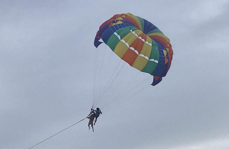 Australian plunges to death in parasailing mishap | The Thaiger