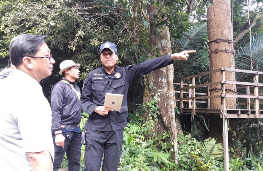 Zipline business under investigation for forest encroachment | The Thaiger