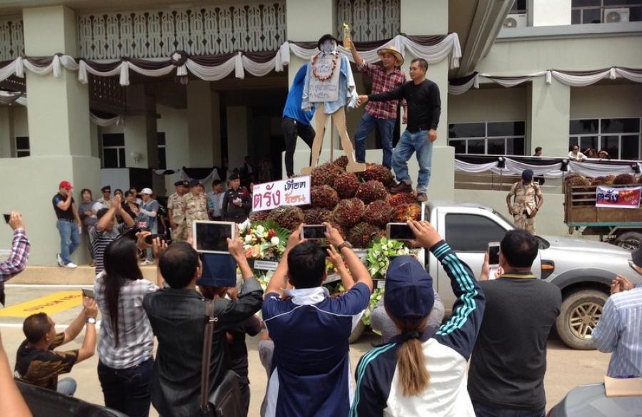 Angry mob burns effigy to protest falling palm oil prices | The Thaiger