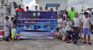 Fixing Phuket's coral. Restoration projects around Phuket | News by The Thaiger