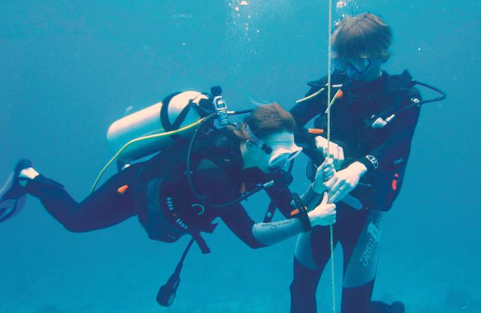 Diving: Protect our new divers   The Thaiger