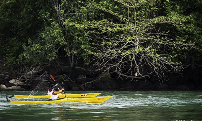 Krabi Kayaking competition underway | Thaiger