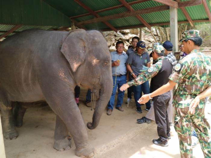 Police seize protected species from Hua Hin Zoo | The Thaiger