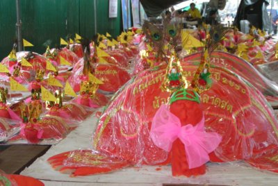 "Annual ""turtle' festival underway 