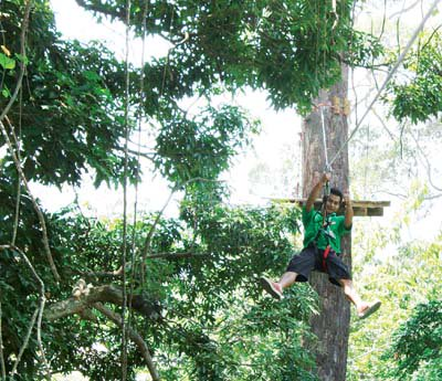 """""""Going ape' in the trees of Chalong 