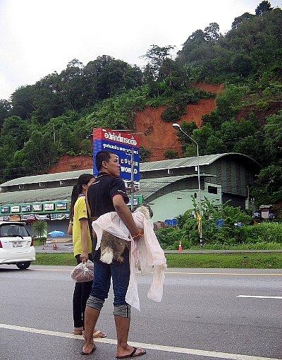 Phuket braced for landslides as more rain falls | The Thaiger