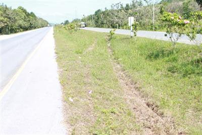 Phuket update: Swede horror smash driver surrenders | The Thaiger