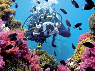 Phuket Diving: Camera rolling, regulator in | The Thaiger
