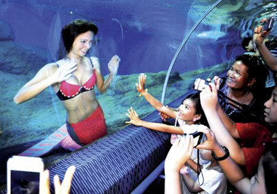 Phuket Lifestyle: Mermaids do exist | The Thaiger