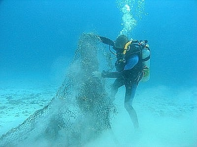 """Phuket's """"Dive against Debris' reef cleanup sets new world record 