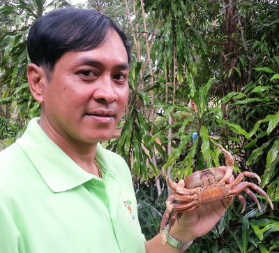 """Rare """"hairy leg mountain crab' spotted in Phuket 