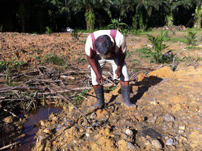 Krabi farm owners pleads for return of fossils | Thaiger