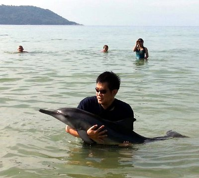 Stranded spinner dolphin rescued at Phuket beach   The Thaiger