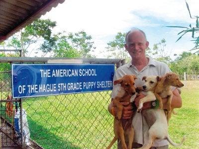 Soi Dog Phuket facing closure, B5mn needed   The Thaiger