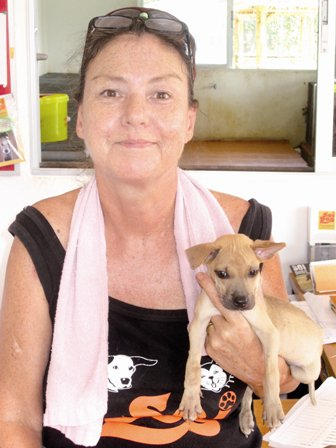Phuket dog hero wins top award | The Thaiger