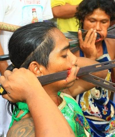Phuket Veg Fest: human blood needed   The Thaiger