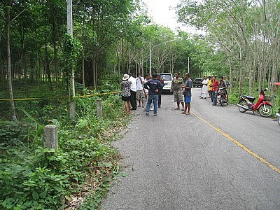 Body of missing Phuket teen found in rubber plantation   The Thaiger