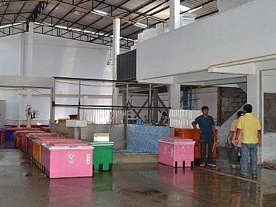 Big stink at Phuket fish factory   The Thaiger