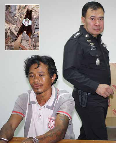 Phuket man slain by Leo-wielding Lao | The Thaiger