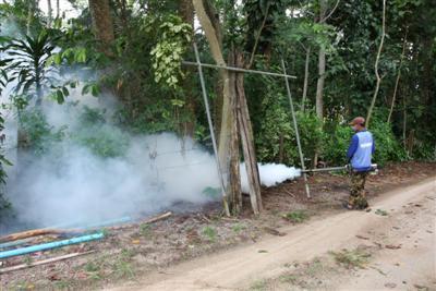 Phuket chikungunya outbreak worsens in June | The Thaiger